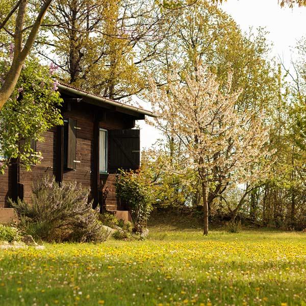 Camping San Michele, Prenota Ora